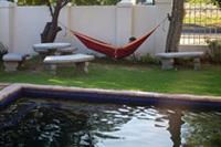 Working in a hammock in Stellenbosch, South Africa
